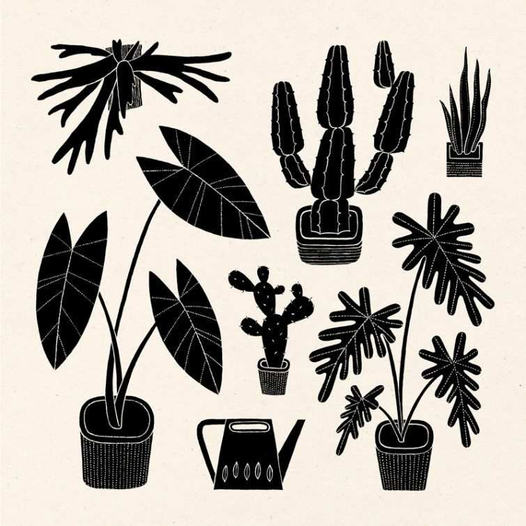 Houseplants_EstherAarts_800x800